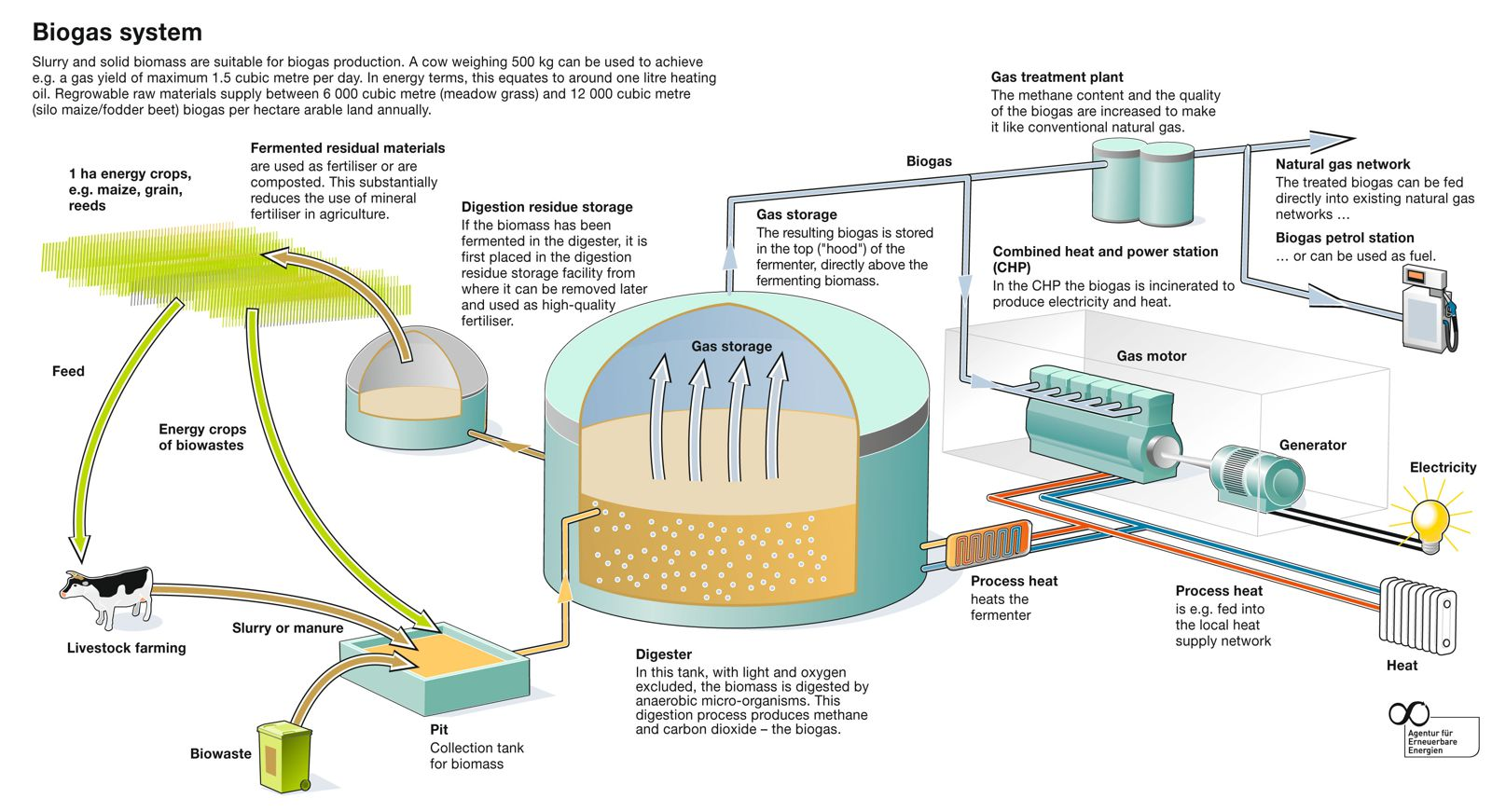 Diagram illustrating a typical biogas plant